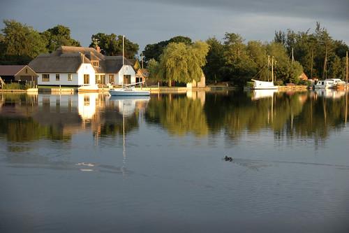 South Walsham Broad, Norfolk   by mira66