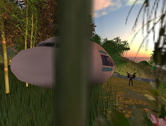 LOST IN SECOND LIFE_002 | by Gary Hayes