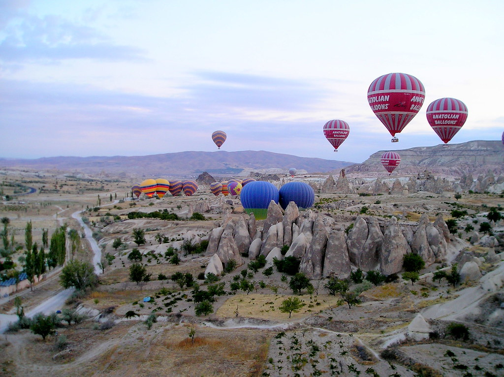 Balloons | Verity Cridland | Flickr