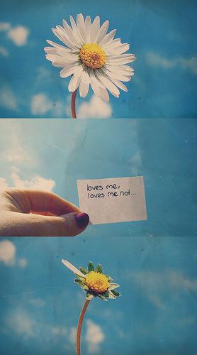 loves me,