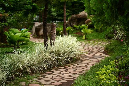 park city plants plant garden landscape pagoda gardening philippines reserve peoplespark steppingstone davao pavillion pilipinas mindanao halaman davaocity dabaw lungsod halamanan lungsodngdabaw maghalaman