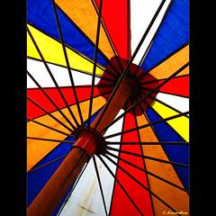umbrella of colors | by dincordero