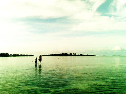 maldivianamateurphotographers