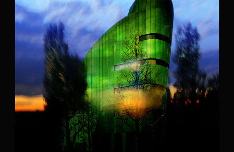 Arquitectura Orgánica