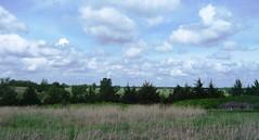 -A Landscape in Ottawa County, Kansas