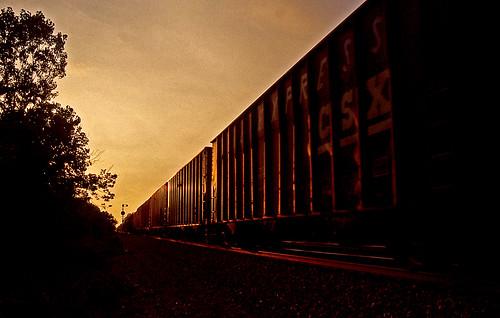sunset sunsets csx sunsetphotography csxtrains sterlingohio goldenhourphotography coketrains csxnewcastlesubdivision csxinsterlingohio
