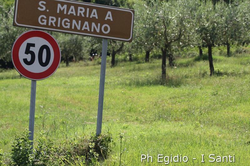 I SANTI Toscana Run 2015 (173)