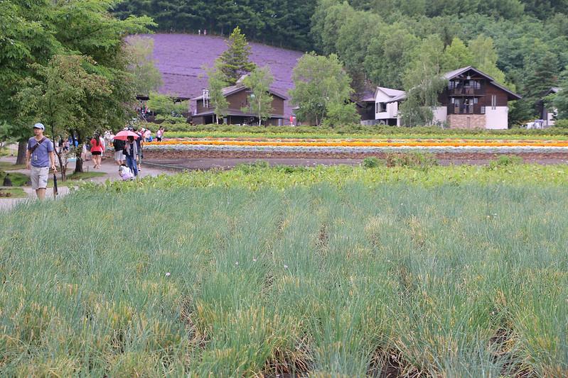 2014-07-23_03527_北海道登山旅行.jpg