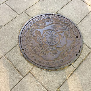 Photo_2015_0730 - Seattle - manhole cover sewer salmon | by ikrichter