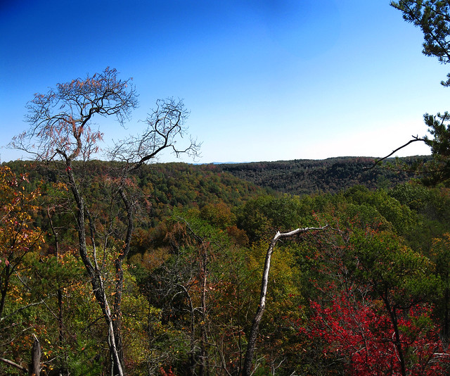 Looking South, Top of South Twin Arch, Big South Fork NRRA, Scott Co, TN