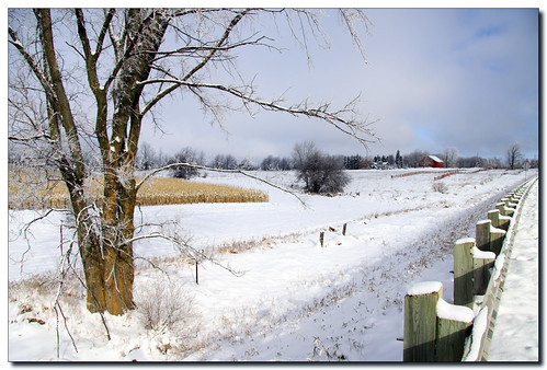 winter red snow ontario canada tree field barn rural canon fence landscape lisas allrightsreserved caledon 50d 2388 canon50d theunforgettablepictures copyrightlisastokes