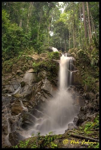 trees nature water forest waterfall rainforest rocks stream picnic malaysia canonef24105mmf4lisusm negerisembilan canoneos1dmarkiii greeneries jeramtoi ©nikfahmi