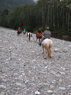 Horseback Riding Bedwell River 2