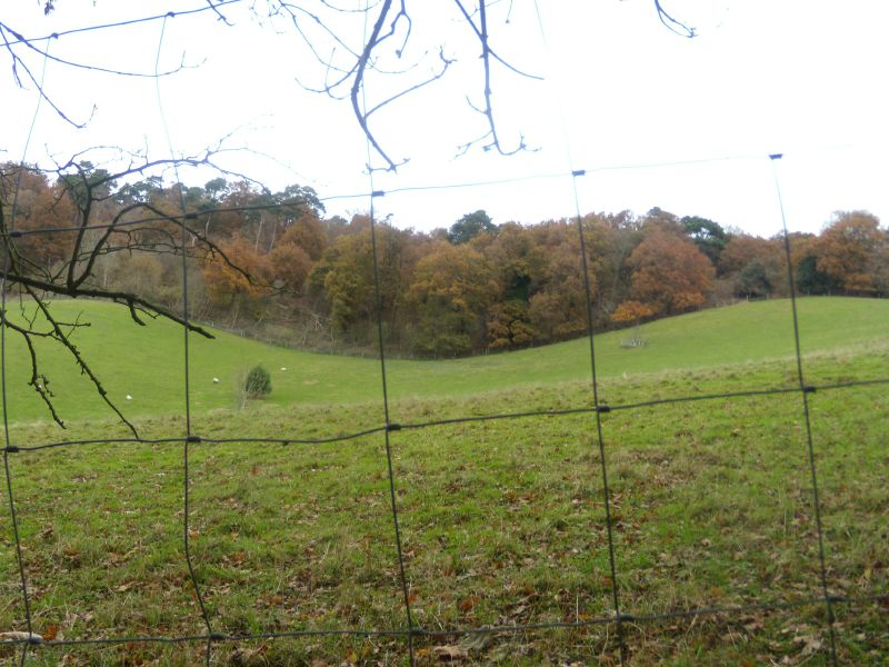 View through fencing Guildford Circular via Chantries Hill
