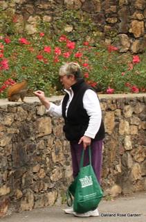 Local neighbor feeding the squirrels