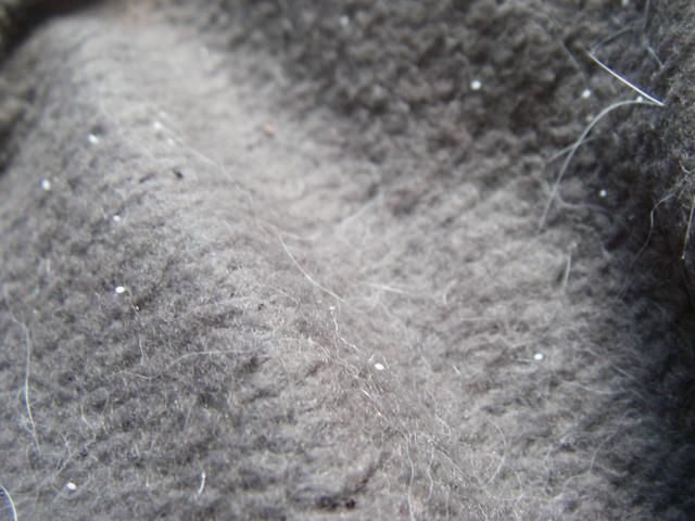 Flea eggs on John's pelt