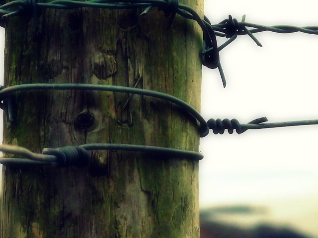 barbed view