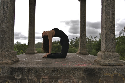 krista practicing ustrasana  wwwlivingmysore photo