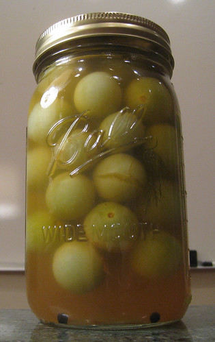 Pickled Green Tomatoes | by Jordan