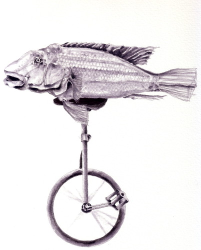Fish on unicycle #3 | by Damien James