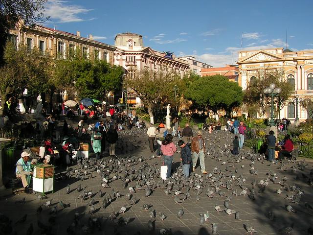 birds plaza