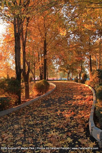 Autumn in Mellat Park of Tehran