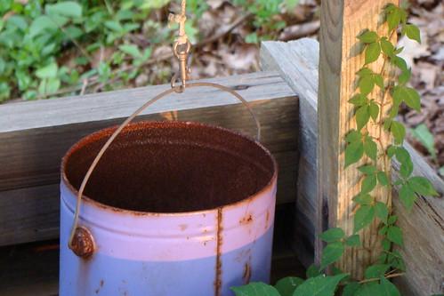 sunset mom bucket well poisonivy