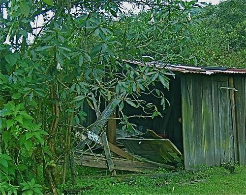 ecuador-shack