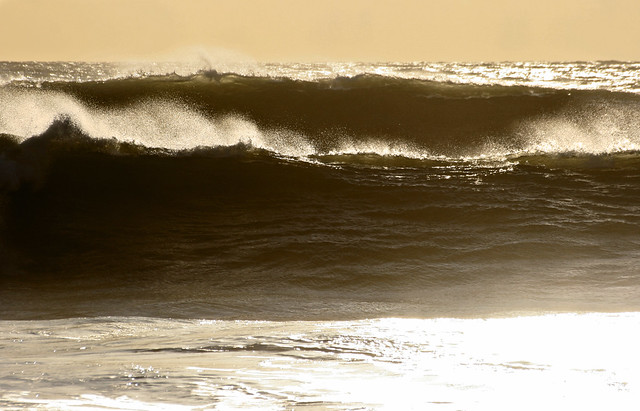 Hypnotic lines - Winter groundswell at Freshwater Bay