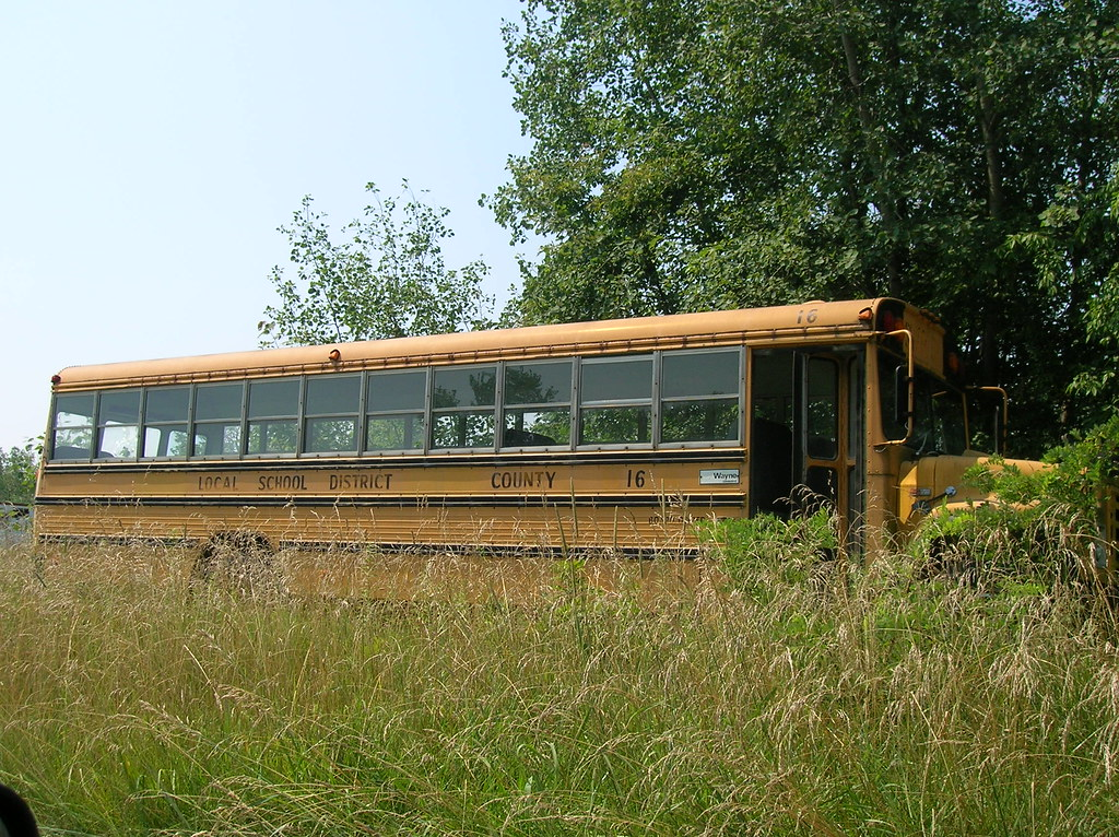 Abandoned School Bus--Mt  Ephriam, Ohio | Aaron Turner | Flickr
