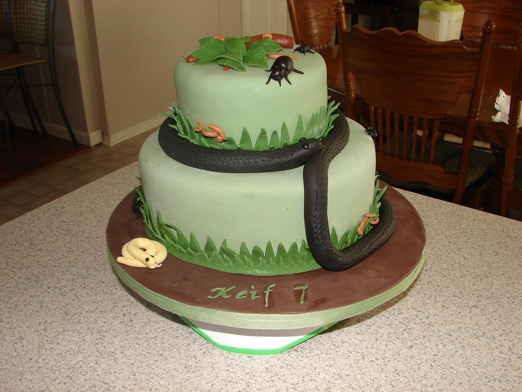 Miraculous Snake Birthday Cake Clarissa Lopez Flickr Funny Birthday Cards Online Overcheapnameinfo