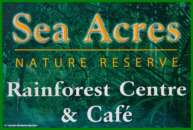 Sea Acres Nature Reserve - Port Maquarie,NSW Australia