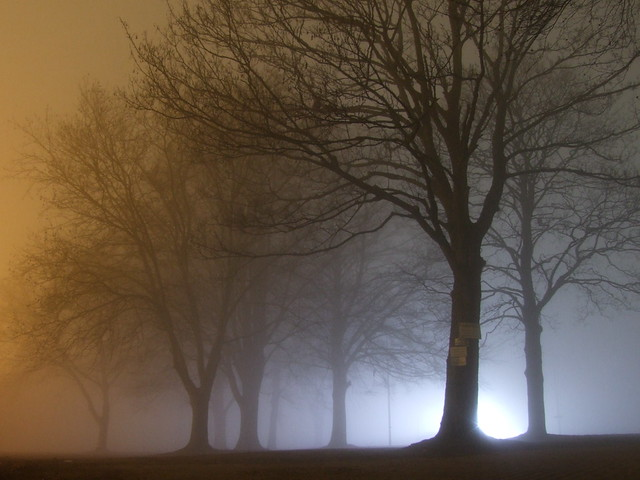Fog in Dortmund