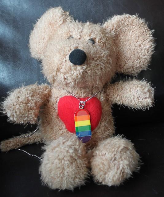 Teddy pride