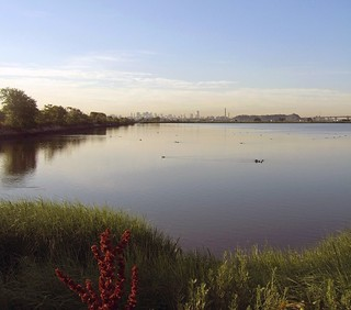 New York City Viewed from the New Jersey Meadowlands | by Tony Fischer Photography
