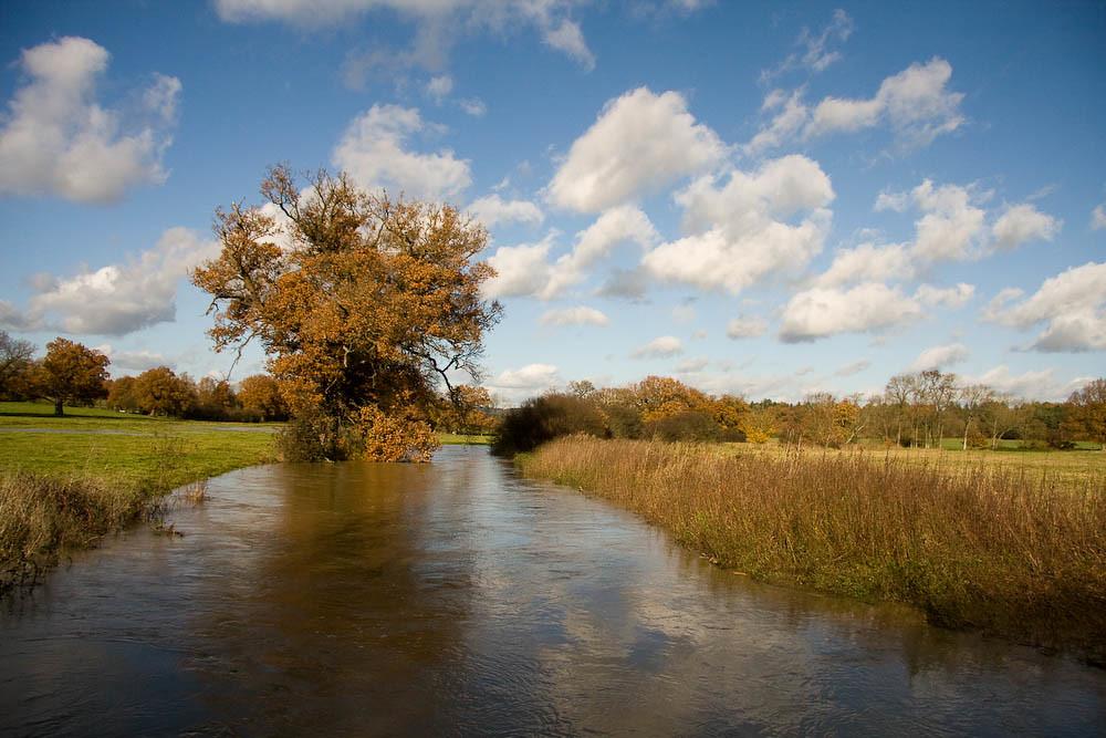 The River Eden