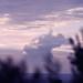 Tall_Cloud