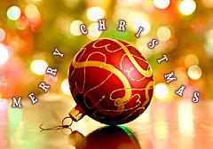 Merry Christmas   by greglobinski