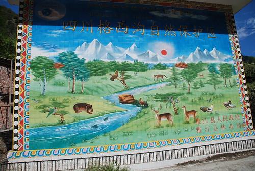 The Sichuan-Tibet Highway | by citizenoftheworld