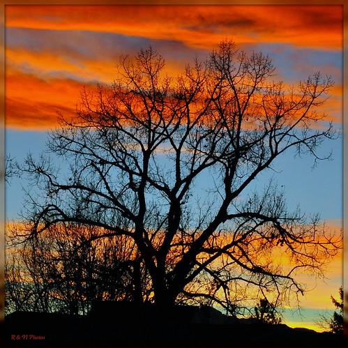 "sunset color fall nikon colorado picnik d90 colorphotoaward superaplus aplusphoto natureoutpost quarzoespecial damniwishidtakenthat flickrlovers nikonflickraward"" 18105vr ""nikonflickraward50mostinteresting"""