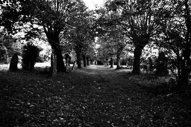 imgp7696 - Graveyard