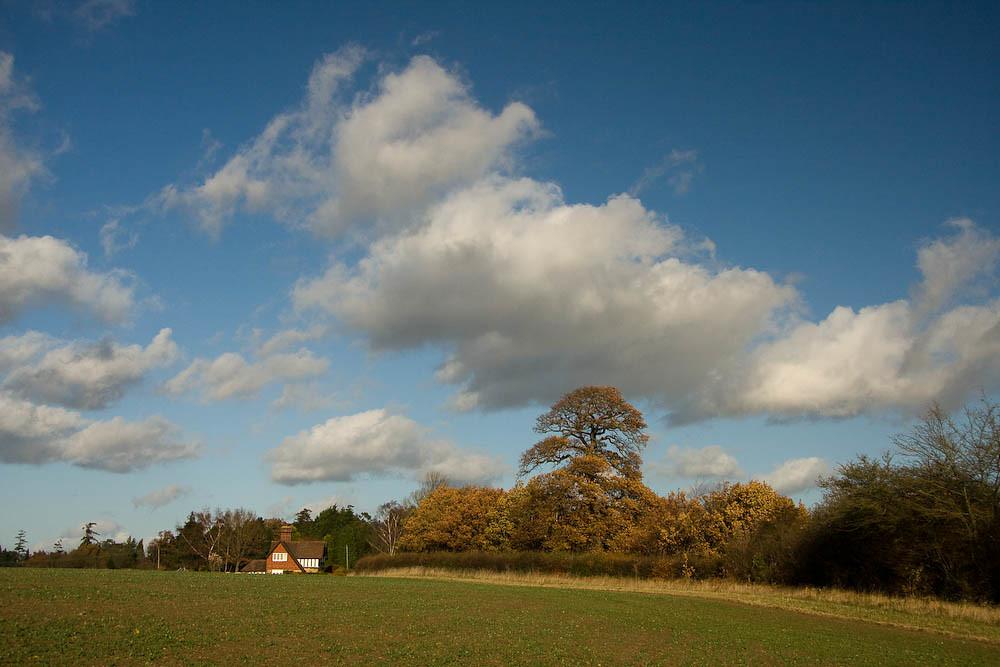 Kent in the Autumn near Penshurst