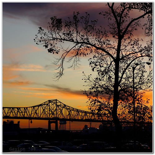 sunset tree louisiana downtown explore batonrouge mrgreenjeans gaylon canonef50mmf18ii mississippiriverbridge minimulprocessing redsticklive gaylonkeeling