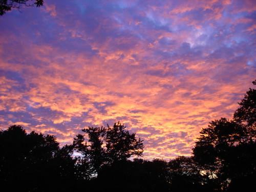 sunrise ct coventry
