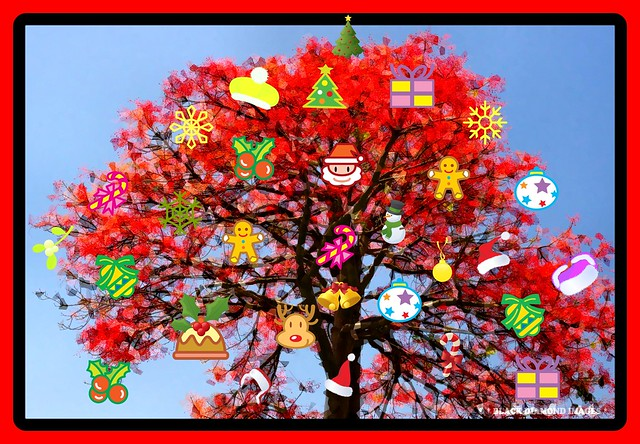 MERRY CHRISTMAS 2008 and HAPPY NEW YEAR 2009