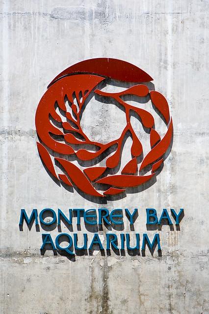 Monterey_Bay_Aquarium-87