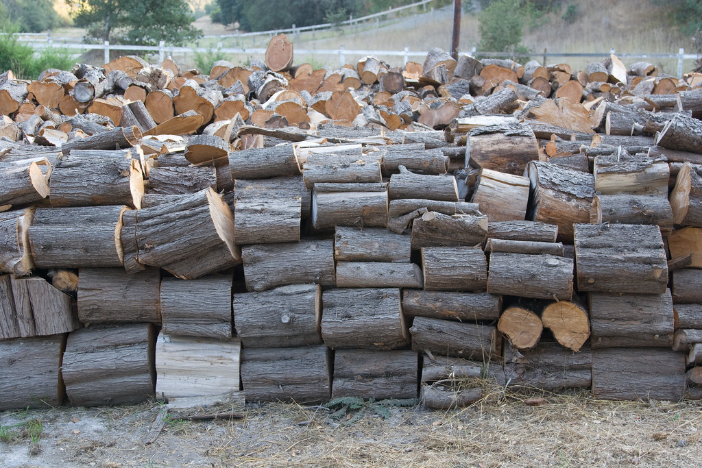 Using non local wood as firewood is not recommended