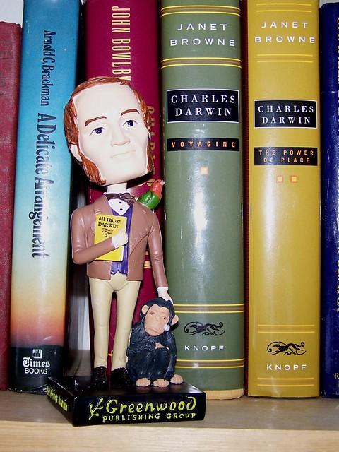 Young Darwin Bobblehead
