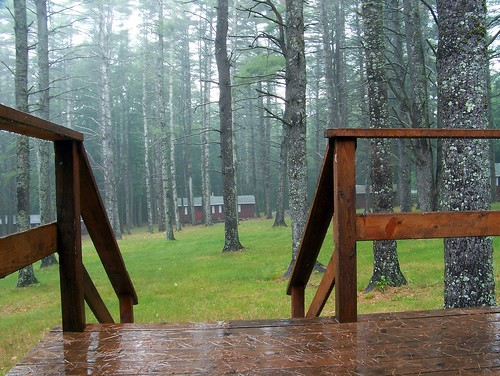 trees camp rain cabin day summercamp rainday z612 kodakz612 regionwide