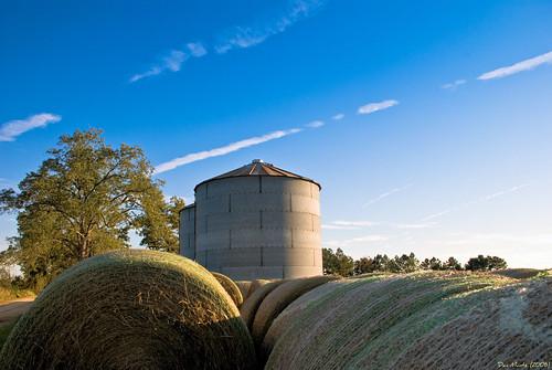 field grain bin hay bales bails d80